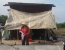 Đập nhà giao mặt bằng, 14 hộ dân phải ở trong... lều