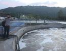 Dân bức xúc vì trạm xử lý nước thải tập trung gây ô nhiễm nặng