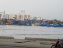 """Thành lập tổ liên ngành kiểm tra việc xử lý ô nhiễm tại """"điểm nóng"""" Âu thuyền Thọ Quang"""