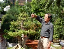 Thu tiền tỷ mỗi năm từ trồng cây cảnh