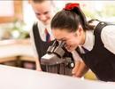 Triển lãm giáo dục chất lượng cao New Zealand