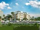 Siêu ưu đãi cho khách mua biệt thự vườn giữa trung tâm Hà Nội