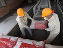 STARCEMT khai trương xuất hàng nhà máy xi măng tại Biên Hòa