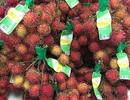 VinEco ra mắt sản phẩm Chôm chôm sạch