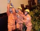 Thợ điện Thủ đô nỗ lực khôi phục lưới điện sau bão