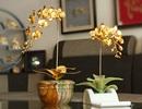 Karalux ra mắt bộ sưu tập hoa phong lan mạ vàng làm quà tặng Tết 2018