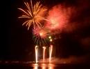 Hân hoan đón năm mới trong màn pháo hoa rợp trời