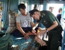 Cứu sống 7 ngư dân bị tàu lạ đâm chìm giữa biển khơi