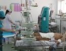 Lo ngại sốt xuất huyết lan rộng trong dịp Tết