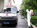 """TPHCM: Dịch bệnh do muỗi đốt tiếp tục """"leo thang"""""""