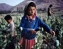 Những khoảnh khắc hiếm về Afghanistan qua tay máy của nhiếp ảnh gia người Mỹ