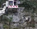 Huy động cả đội cứu hộ để giải cứu một con dê