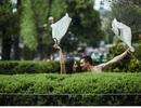 Công viên chủ đề sex của Brazil gặp nhiều chỉ trích trước khi mở cửa