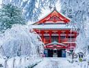 Những điểm nhất định phải ghé qua khi tới Nhật Bản (P1)