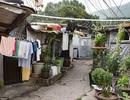 Khu ổ chuột rách nát khó tin giữa lòng Seoul hoa lệ