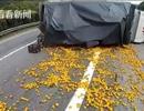 """Người dân lao đến """"hôi của"""", tài xế chở xe cam ôm mặt khóc giữa đường"""