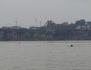 """Các """"kình ngư"""" sảng khoái bơi lội trên sông Hồng trong giá rét"""