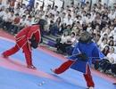 Liên hoan võ thuật quốc tế TPHCM 2016: Những dấu ấn khó quên