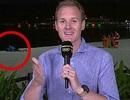 """Cặp đôi làm """"chuyện ấy"""" ngay phía trong khung hình truyền hình về Olympic"""
