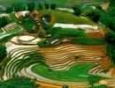 Báo Anh ca ngợi hết lời vẻ đẹp của ruộng bậc thang Việt Nam