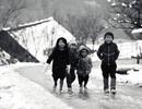 """Những thiên đường ngắm tuyết đẹp """"mê hồn"""" ở Việt Nam"""