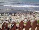 """Du lịch Bình Thuận lên tiếng về việc rác """"bao vây"""" Mũi Né"""
