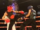 Khai mạc giải võ thuật các VĐV xuất sắc toàn quốc 2015