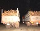 Trắng đêm xử lý xe quá tải trên đường Hồ Chí Minh