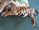 Ngang nhiên rao bán cao hổ, động vật quý hiếm trên Facebook