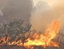 Bí thư xã bị thương khi dập lửa cứu rừng