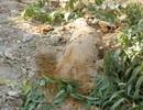 """Quả bom """"khủng"""" trong vườn nhà dân 6 ngày chưa được xử lý"""