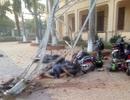 Hãi hùng hình ảnh vụ cần cẩu đổ sập đè chết một học sinh