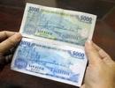 Tiền giả mệnh giá 5.000 đồng len lỏi vào chợ