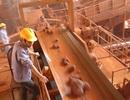 Dự án bauxite sập bẫy giá rẻ từ Trung Quốc