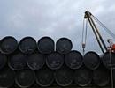 """""""Giá dầu có thể giảm về mức 15 USD/thùng"""""""