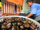 Thương lái Trung Quốc lại lùng mua nông sản quý của Việt Nam