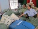 Bắt giữ lô hàng nhập lậu trị giá 12 tỷ đồng nghi xuất xứ Trung Quốc