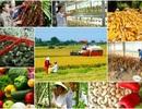 """Đại sứ Hoa Kỳ: Nông nghiệp có tầm quan trọng """"sống còn"""" với Việt Nam"""