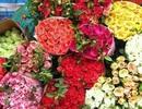 """Hoa hồng tăng giá sốc vẫn """"cháy"""" hàng dịp lễ Valentine"""