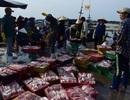 Vụ cá chết bất thường: EU cảnh báo, Vasep khẳng định thủy sản an toàn