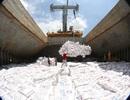 Xuất khẩu gạo dự báo còn nhiều diễn biến khó lường