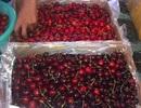 Nhập khẩu rau quả từ Úc tăng đột biến