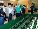 """Trái cây ngon không thể xuất khẩu và """"tử huyệt"""" của nông nghiệp Việt"""