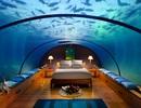 Hơn 300 triệu đồng cho một đêm ngủ dưới đại dương, ngắm cá bơi trên đầu