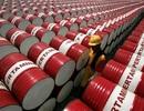 OPEC: 24 năm nữa giá dầu mới chạm lại mức 95 USD/thùng