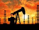 """Giá dầu """"phá đáy"""" 13 năm, xuống dưới 27 USD/thùng"""