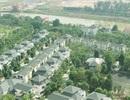 Bồi thường, hỗ trợ bình quân 100.000 đồng/m2 đất tại dự án Ecopark