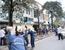 Tổng Thanh tra Chính phủ đề nghị Chủ tịch Hà Nội làm rõ cơ sở chặt hạ cây xanh