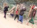Gỡ vấn đề quốc tịch cho người di cư tự do tại vùng biên giới Việt - Lào