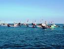 Tăng đầu tư phát triển hạ tầng nghề cá